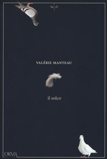 Librisulrazzismo.it Il solco Image