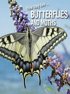 How They Live... Butterflies and Moths
