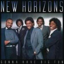 Gonna Have Big Fun - Vinile LP di New Horizons