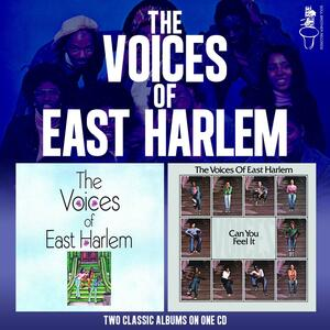 Can You Feel it - Vinile LP di Voices of East Harlem