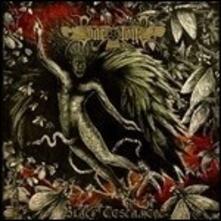 Black Testament (Limited Edition) - Vinile LP di Svartsyn